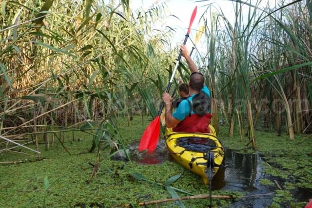 excursii-turistice-in-delta-dunarii-cu-caiacul
