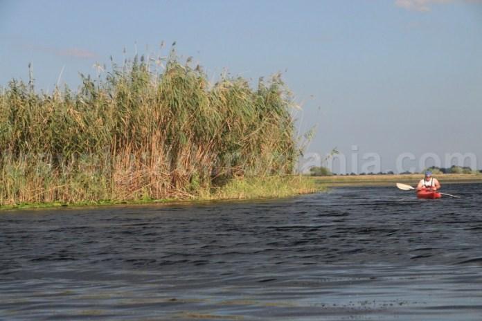 lacul-ligheanca-turism-in-delta-dunarii