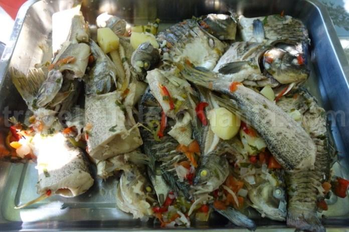 mancare-traditionala-din-delta-dunarii-bors-pescaresc
