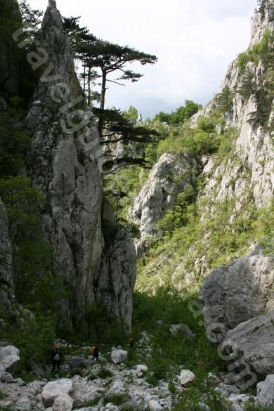 Parcul Național Domoglet – Valea Cernei