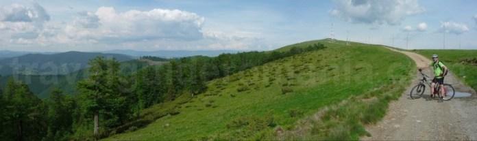 Muntele Gaina