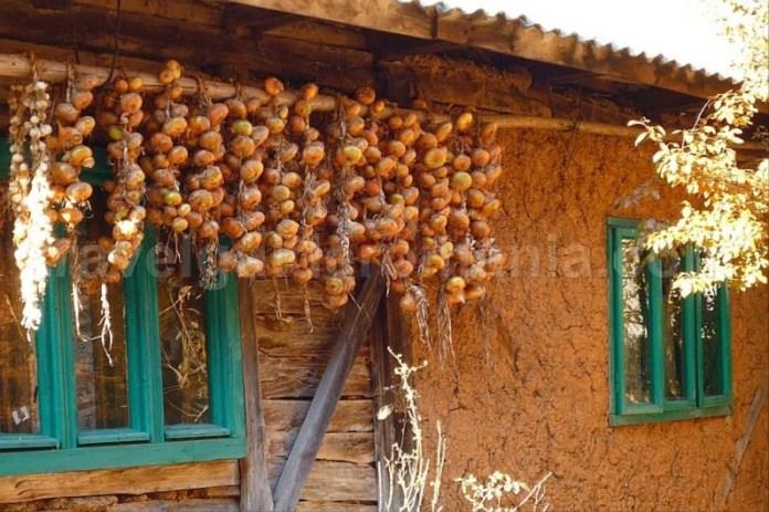 casa traditionala Padurea Craiului Apuseni