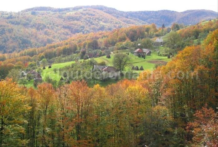 catun valea bratcutei mtb Padurea Craiului Apuseni