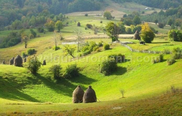 doline-Ponoara-mtb-Padurea-Craiului-Apuseni