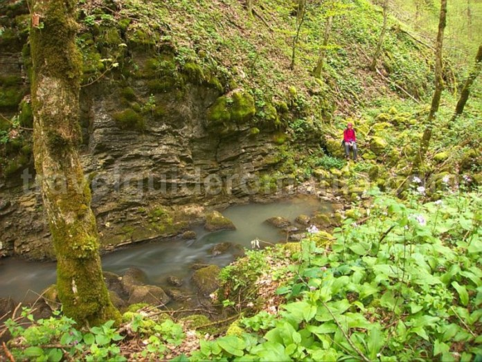 izbuc toplita de rosia hiking Padurea Craiului Apuseni