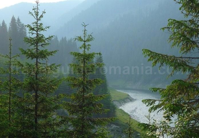 muntii latoritei lac galbena petrimanu mountain-biking