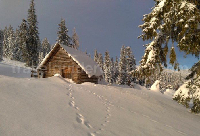 vladeasa apuseni iarna winter