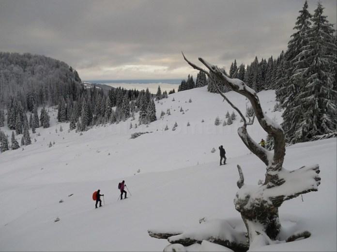 padis apuseni iarna winter snowshoeing
