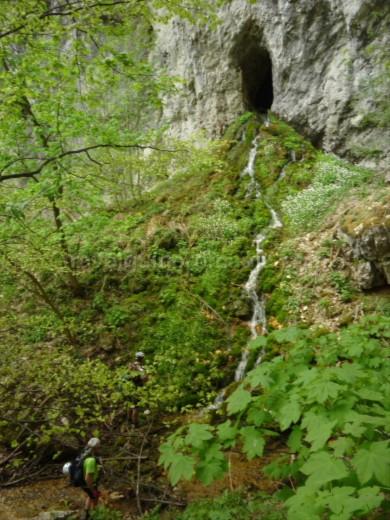 Parcul Național Cheile Nerei-Beușnița liciovacea