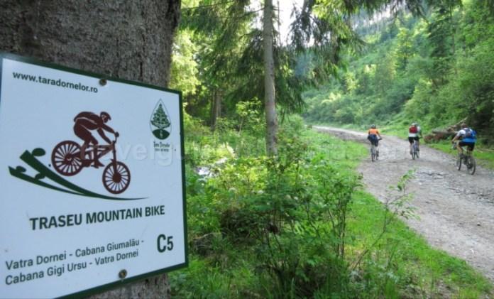 Țara Dornelor traseu mountain bike giumalau