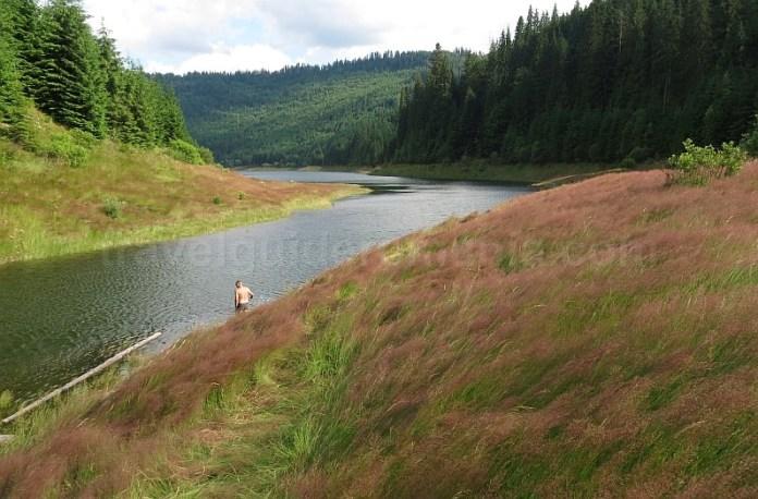 lacul dragan apuseni sebesel