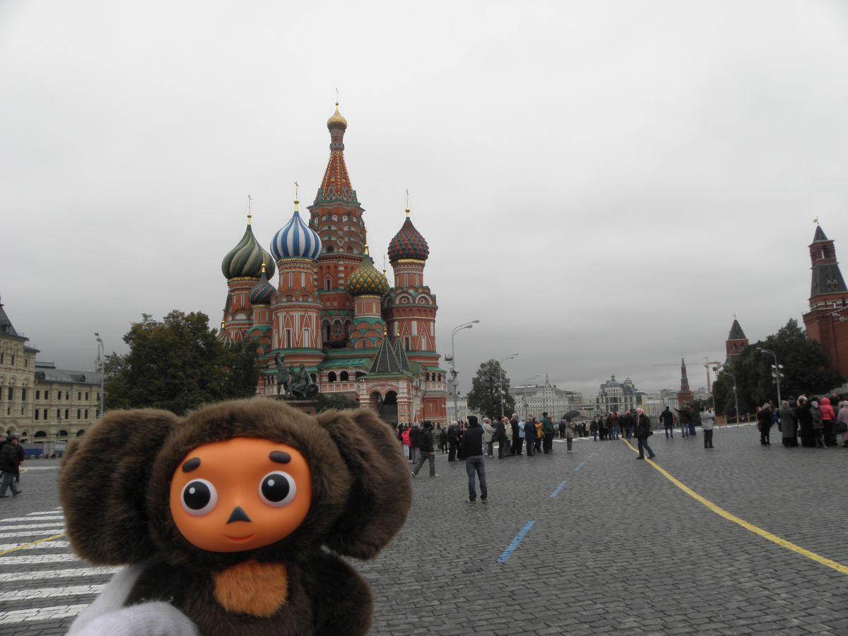 Image result for cheburashka