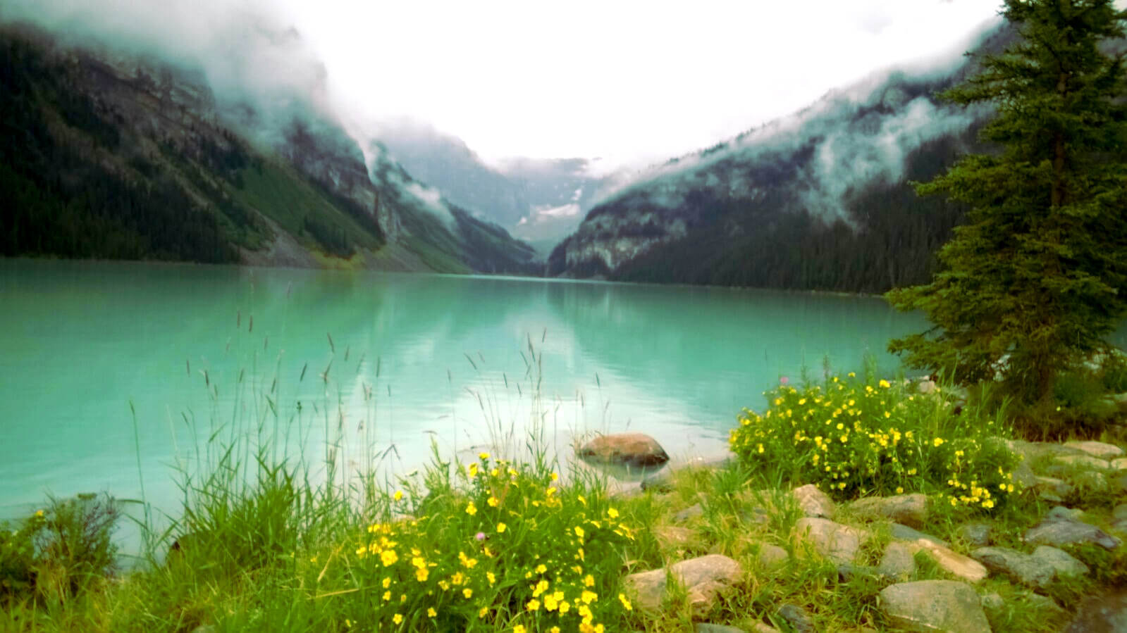 The emerald color of Lake Louise is particularly enhanced on a cloudy day.
