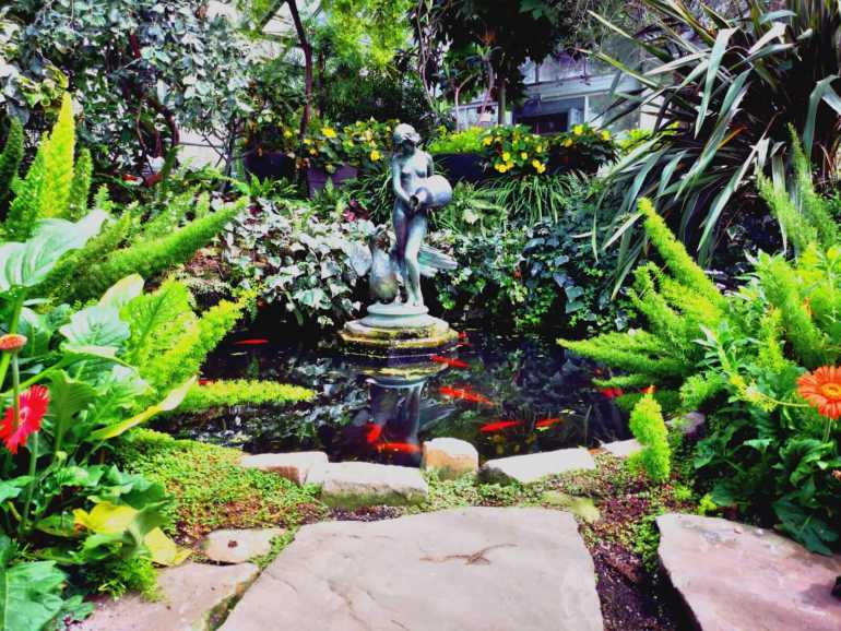Free things to do in Toronto :The Allans Gardens Conservatory