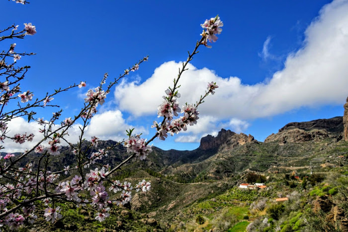 Best places to visit in winter - Gran Canaria, Spain