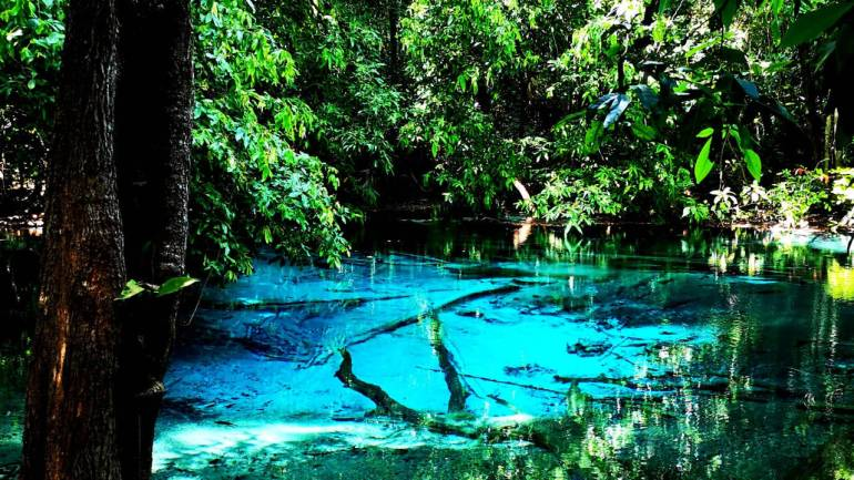The source of the Emerald Pool, Blue Pool, sits on a volcano and has a vivid blue color due to the mineral deposits.