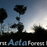 First Aeta Forest Food Festival