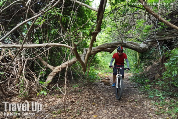corregidor island philippines jungle trail
