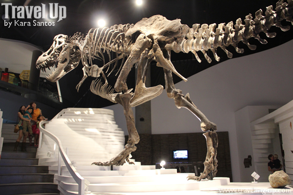 A Trip to The Mind Museum – Travel Up