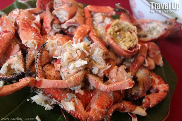 coconut crab sabtang island batanes