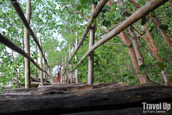 siquijor guiwanon spring park bridge