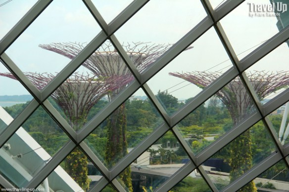 gardens by the bay singapore 03b