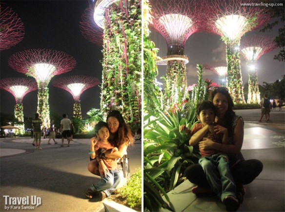 gardens by the bay singapore 11