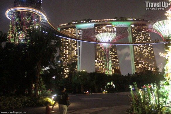 gardens by the bay singapore 12