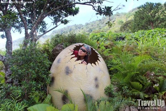 dinosaur island baguio egg
