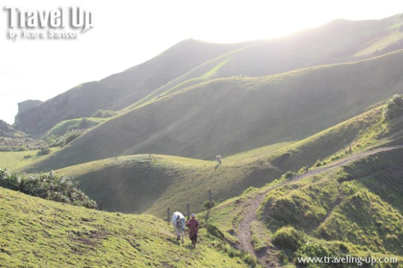 batanes vayang rolling hills farmer cow