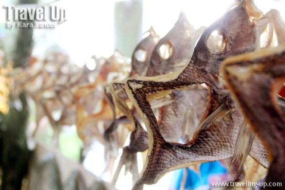 09. vakul kanayi festival sabtang batanes philippines trade fair dried fish
