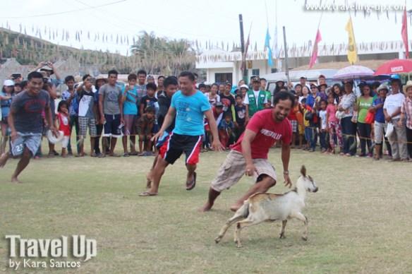 11. vakul kanayi festival sabtang island batanes games pig