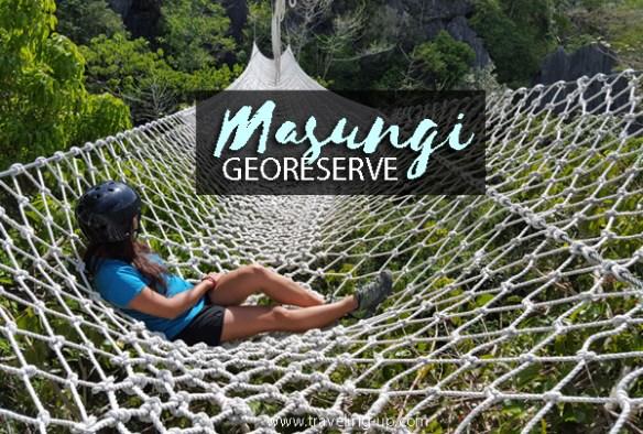 masungi-georeserve-travelup-hammock-cover