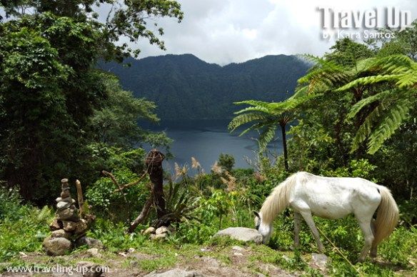 lake holon south cotabato overlooking view horse