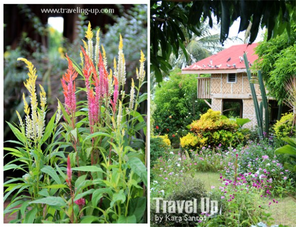 12-canaan-hill-farms-biliran-restaurant