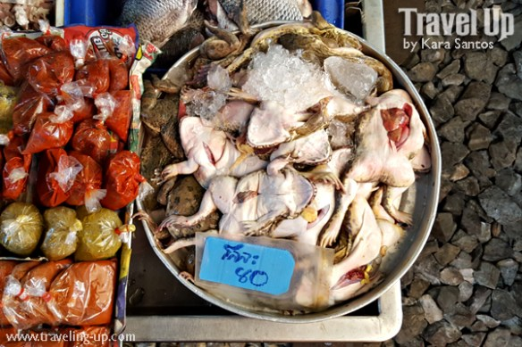 day 3 rom hub maeklong railway market frogs
