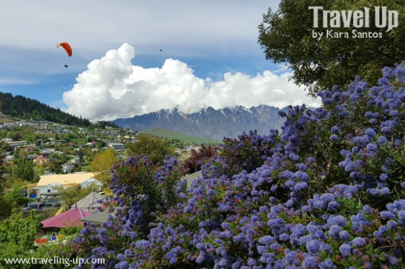queenstown-new-zealand-parachute-flowers