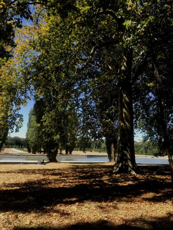 vue sur le grand canal du Parc de sceaux