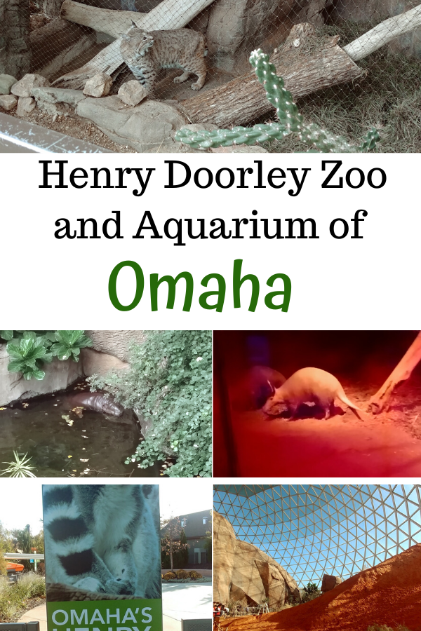Henry Doorly Zoo Animals and Aquarium are Mindblowing Fun