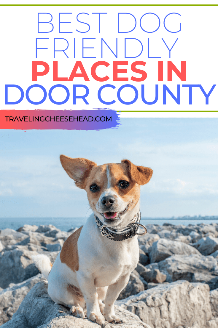 Best Dog Friendly Places In Door County