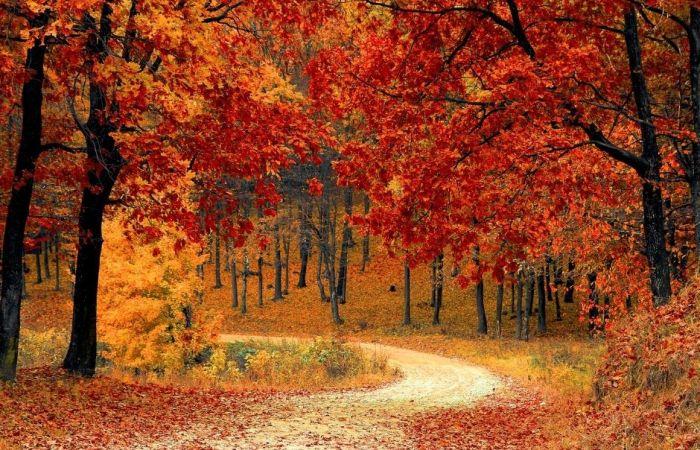best fall road trips in door county