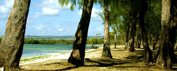 When to visit Mauritius