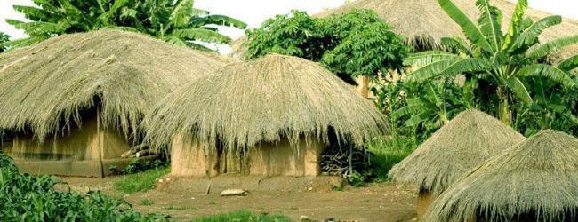 Qualcosa sul Malawi