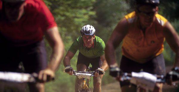 Enjoy mountain biking