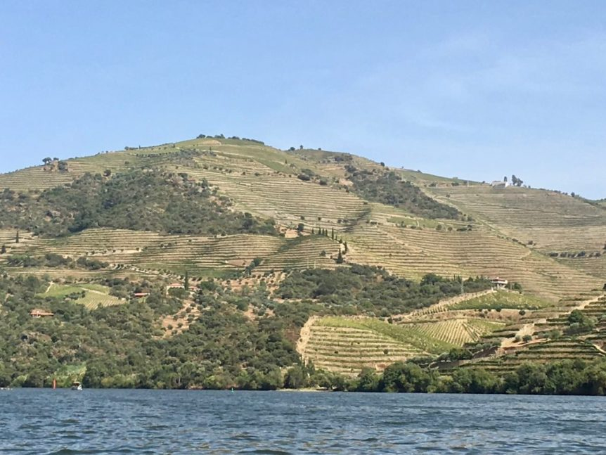 In the Douro Valley