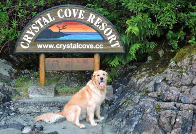 Tofino pet friendly resorts, Crystal Cove Beach Resort, Crystal Cove, Tofino Beach Resort, Tofino Accommodations, Tofino Hotels, Tofino family hotels