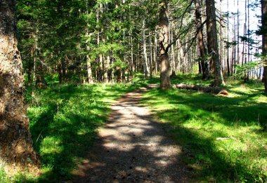 Rebecca Spit, Quadra, Quadra Island, Quadra Island beaches, Rebecca Spit Provincial Park