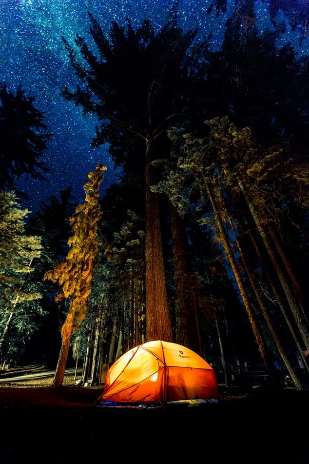New-Camping-record-set-in-Tennessee-during-the-pandemic-year