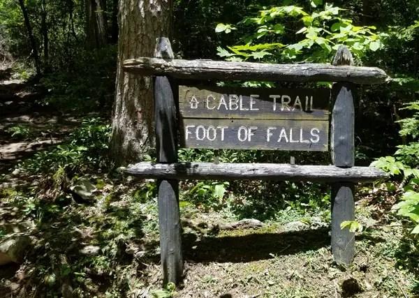Cable Trail at Fall Creek Falls