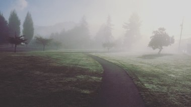 morning-fog